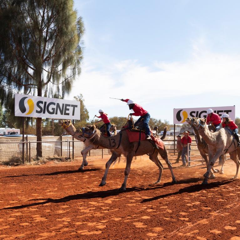 Uluru Camel Cup
