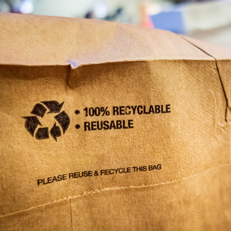Brown Reusable and Recyclable Bag